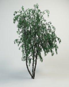 3ds max birch tree flower