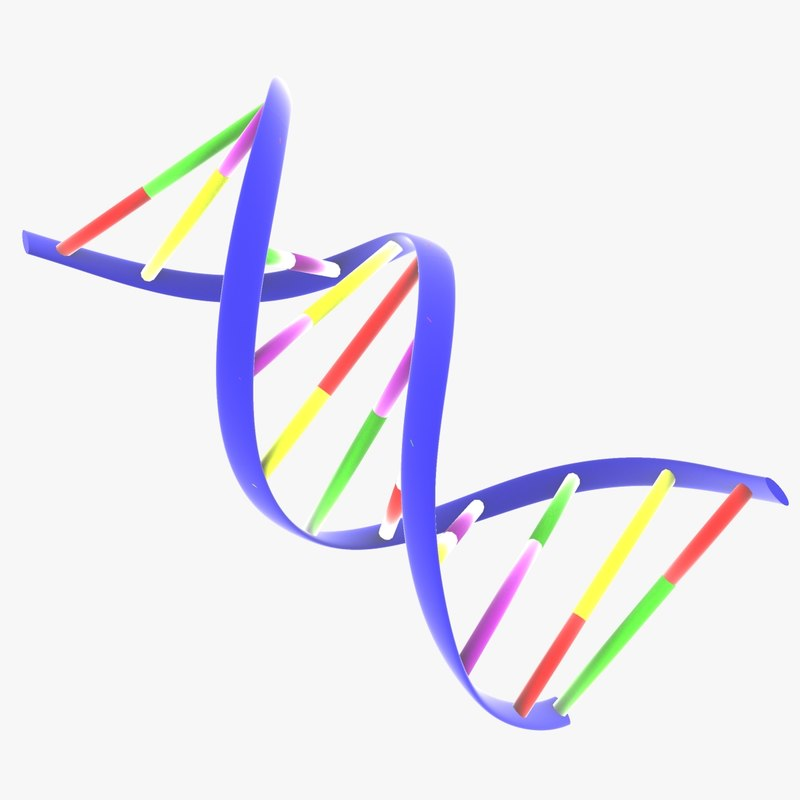 3ds max ribbon dna