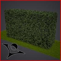 max hedge