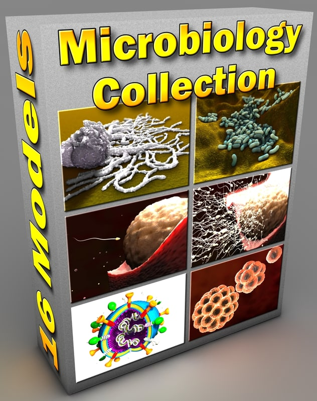 microbiological bacteria cell 3d model