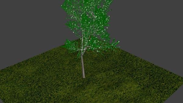 Free Tree FBX Models for Download | TurboSquid