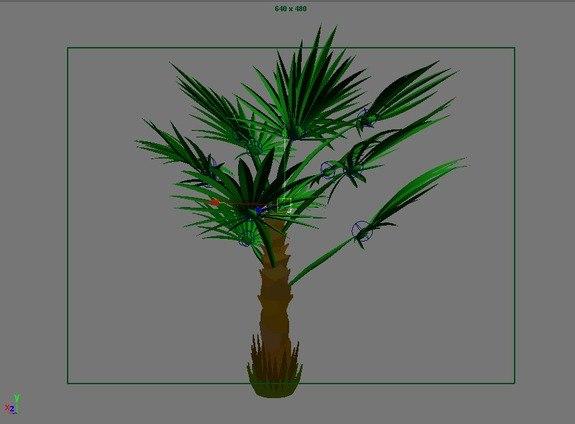 3d model windmill palm trees