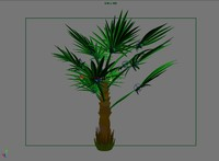 3d model windmill palm trees