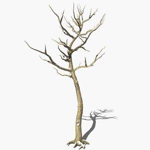 3ds max scanline winter deciduous tree