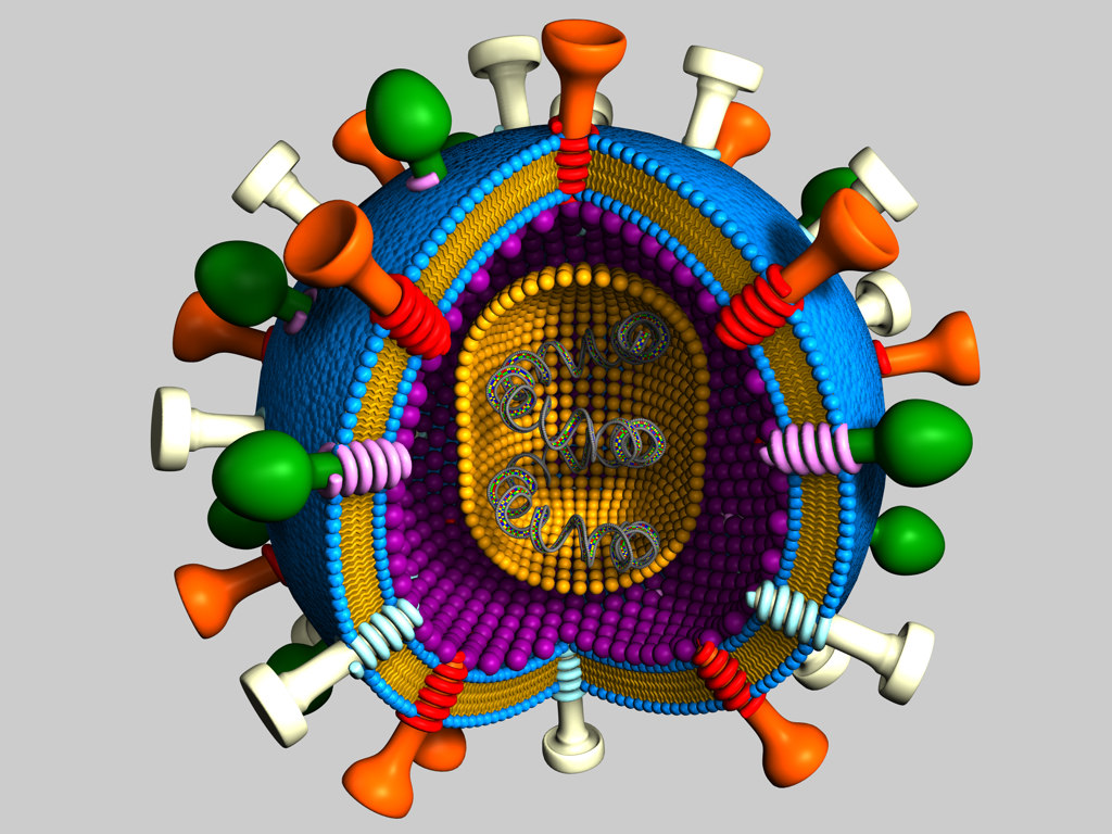 how to make a 3d model of a virus