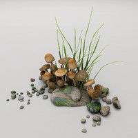 3d model scene mushrooms