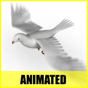 dove flying animation 3d model