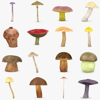 mushrooms (eatable)