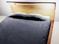 double bed curved 3d max