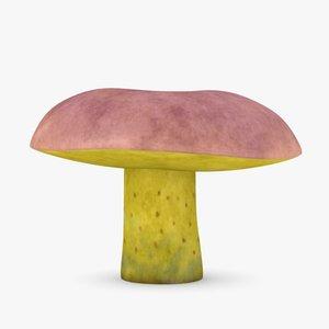 3d mushroom boletus regius