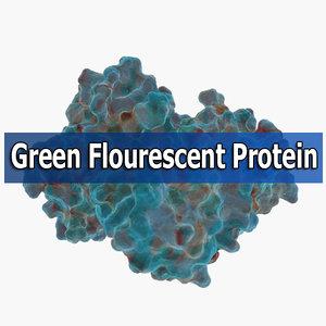 green fluorescent protein max