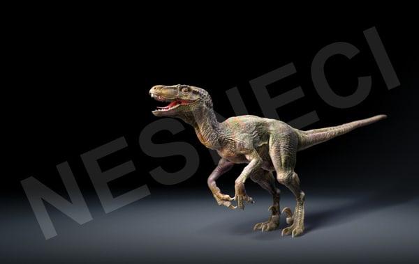 3d model raptor dinosaur