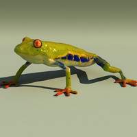 3d frog animation