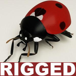 3d coccinella septempuctata ladybug model