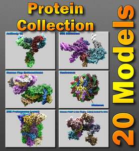 c4d human protein 20s