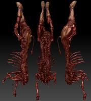 Cow Dead Body 2