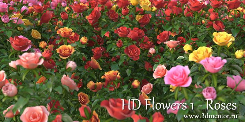 3d flowers 1 roses model