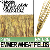 Emmer Wheat Fields Poser DAZ VFX Animation