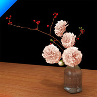 carnation in glass vase