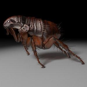 flea 3d model