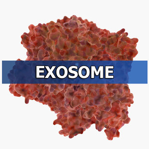 exosome protein organic max