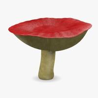 mushroom russula paludosa 3d model