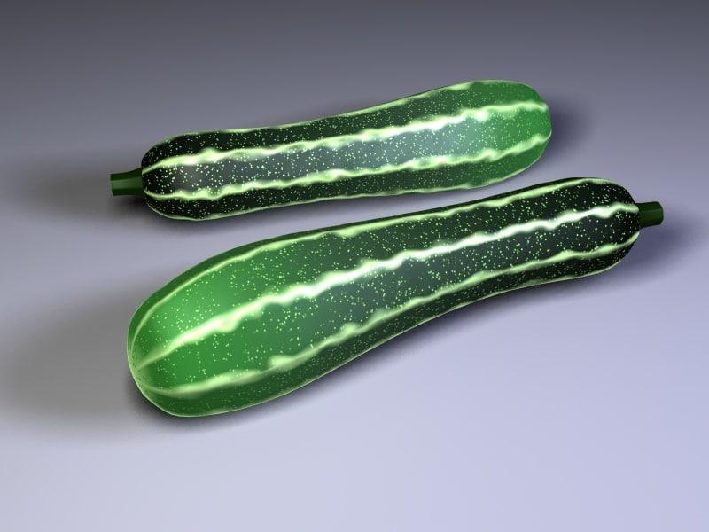 3d model zucchini