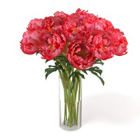 pink red peony flower bouquet