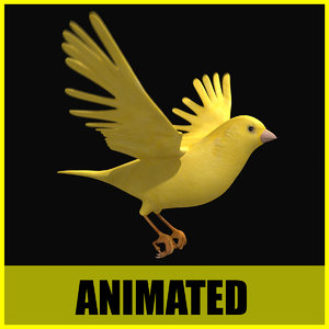 canary flying animation 3d 3ds