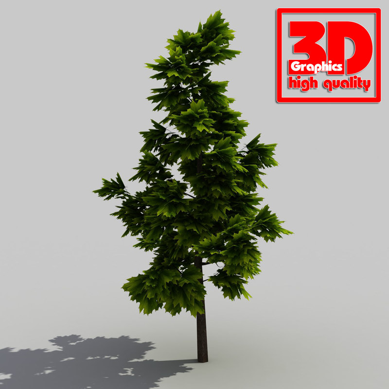 modelled trees max