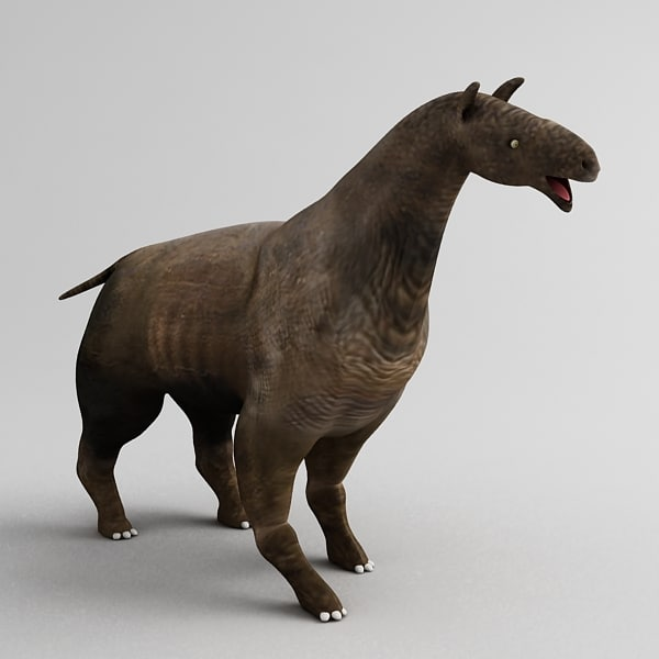 3d model of indricotherium