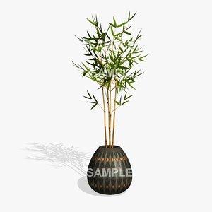 bamboo plant pl 3d 3ds