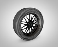 Tire with rim