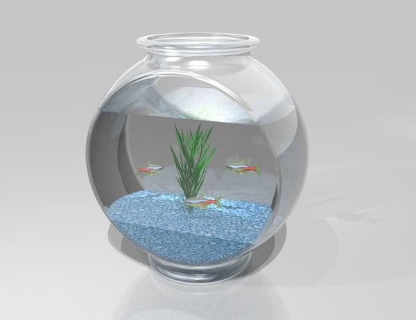 3d fish bowl model