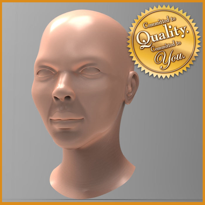 3d model of female head