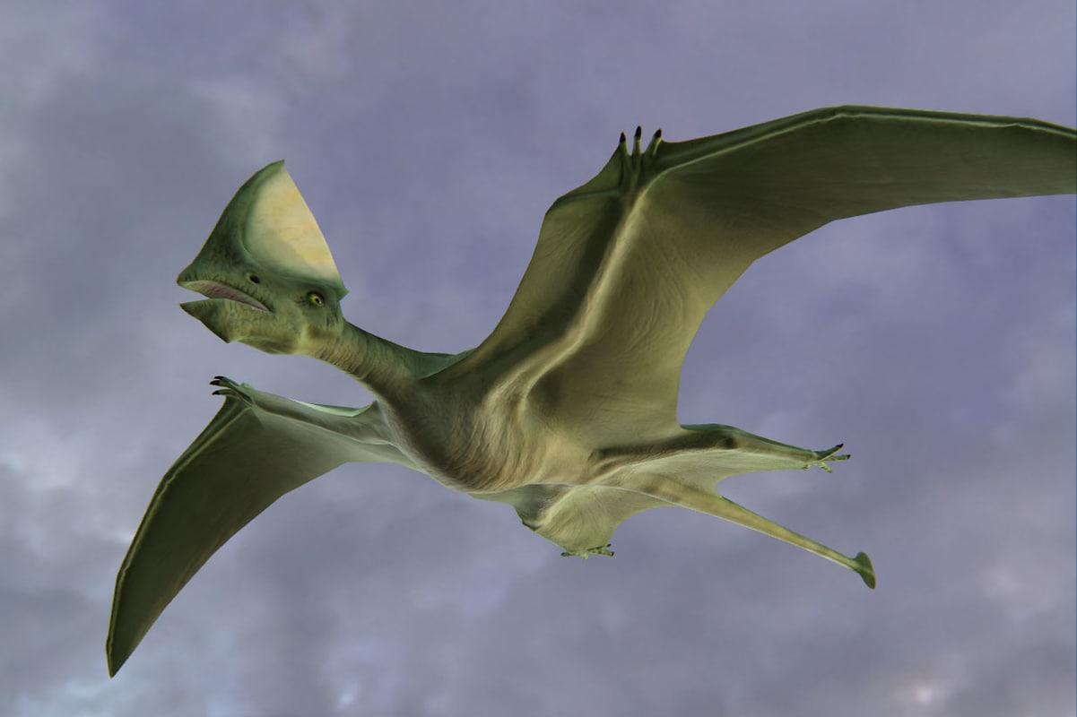 dinosaur pterosaur prehistoric 3d model