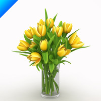 Yellow Tulips in vase