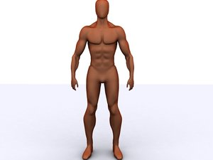 character humanoid max