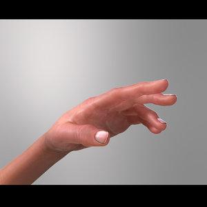 max hand musculature