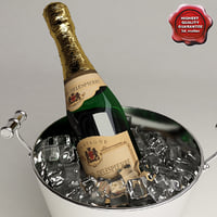 3d champagne buckets