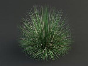 3d max bluegrass grass