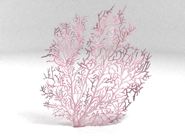 3ds max fan coral