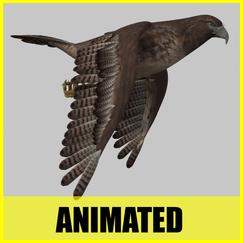 dxf hawk flying animation