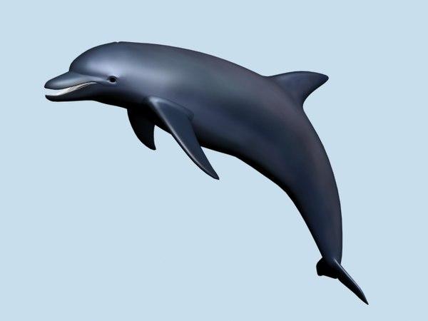 3dsmax dolphin