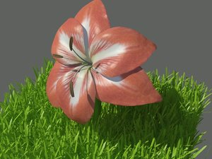 3d growing flower model