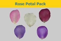 rose petal 3d ma