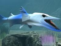 killer barracuda 3d model