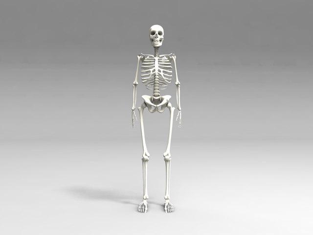 3ds skull
