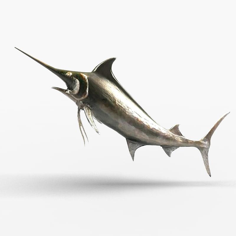 wall fish max
