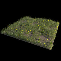 Grass and Dandelions (Terrain 1)
